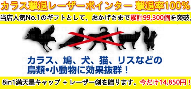 カラスレーザーポインター撃退 人気No.1